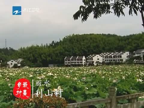 [浙江新闻联播]特别策划:到最美乡村 寻找最美风景 20130701