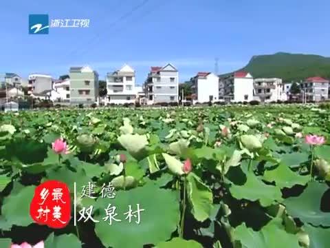[浙江新闻联播]特别策划 到最美乡村 寻找最美风景 20130706