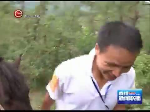 """[贵州新闻联播]惠水:驻村干部""""转职""""马帮送水队"""