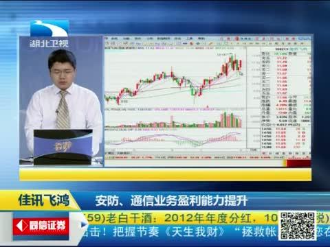 [天生我财]佳讯飞鸿:安防、通信业务盈利能力提升 20130802