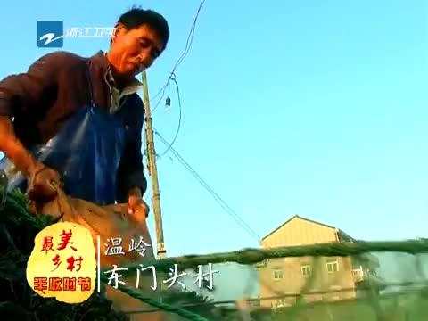 [浙江新闻联播]特别策划:到最美乡村 享受丰收时节 20131115