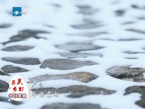 [浙江新闻联播]特别策划 到最美乡村 赏冬日美景 天台华顶雾松