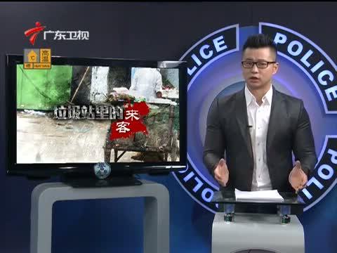 《南粤警视》 20150809 垃圾站里的来客