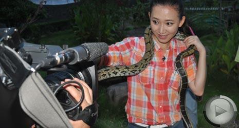 暑期对抗:蛇乡会蛇(2)