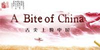 大型纪录片《舌尖上的中国》 总编导