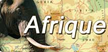 <font color=#990000 >Afrique Infos</font>