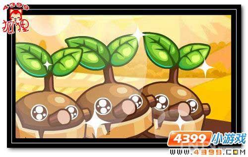 洛克王国木豆丁的故事