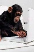 动物与电脑的趣图