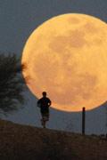 """实拍世界各地天空的""""超级月亮"""""""