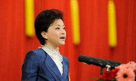 杨澜政协大会发言 谈促进文化事业发展