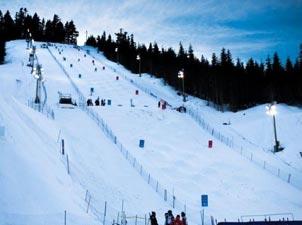 塞普莱斯山滑雪场<br>比赛项目:自由式滑雪、单板滑雪