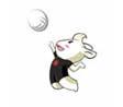 亚运会项目介绍:排球