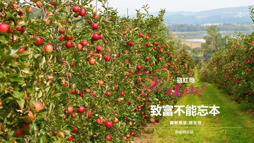 """寇红艳,北京市门头沟区雁翅镇益农缘生态农业专业合作社理事长。六年前,她刚开始干这行的时候,不少人劝她""""不好好开你的农家乐,搞什么农民合作社,多冒险啊,看你是吃饱撑的""""。可寇大姐说,""""我看不得别人有困难,就是想帮乡亲们一把。"""""""