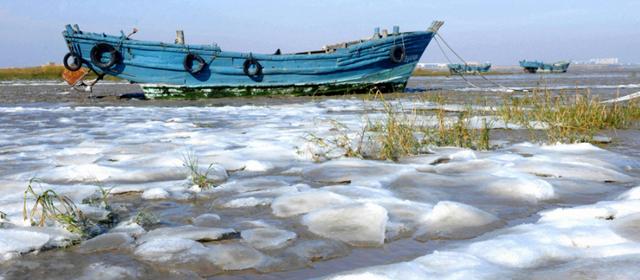 海面变冰面 山东青岛50年罕见严寒