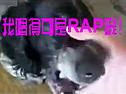 狗嘴被捏住 被迫说唱RAP