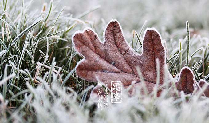 节气的由来 霜降-跟秋天分手的日子