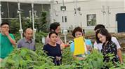 中國新農民