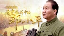《历史转折中的邓小平》