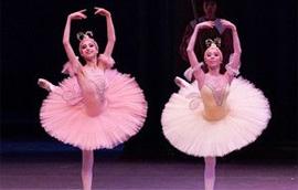 古典芭蕾明珠《睡美人》