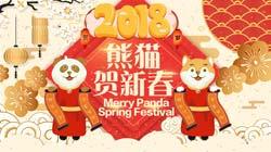 熊貓頻道狗年新春大拜年