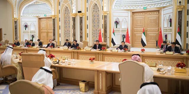 习近平同阿副总统、阿布扎比王储会谈