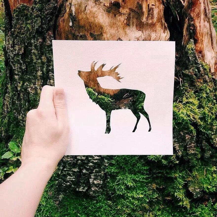 动物剪纸 镂空背景色彩丰富