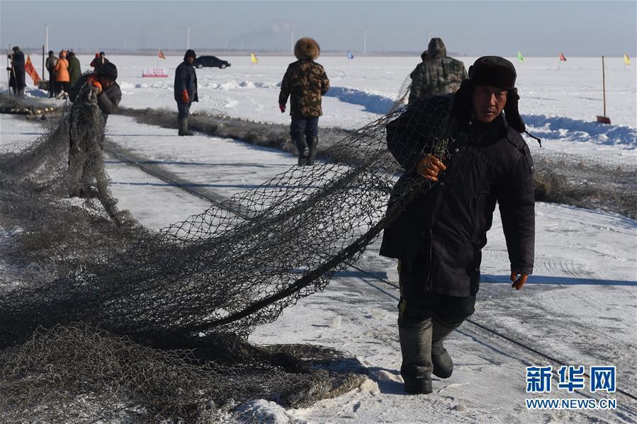 """1月8日,游客展示刚刚""""抢""""到的大鱼。   北纬45°,清晨7点,零下25。每年12月末开始,每天有近两百名渔民准时齐聚吉林省松原市查干湖冰封的湖面上,他们沿用最原始的方式捕鱼,传承着近千年的渔猎技艺。   在查干湖,冬捕是一门家传手艺,蕴含古代劳动人民的智慧结晶。渔民先用冰锥在湖面上凿出几百个冰洞,然后利用穿针引线的原理将几千米长的渔网按照冰洞间的连线形成合围,再用马拉绞盘收网捕鱼,一整套工序与千百年前无异。凭借独特且原汁原味的渔猎技艺,每年查干湖冬捕都吸引众多游客"""