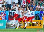 [高清组图]欧洲杯-米利克破门 波兰1-0北爱尔兰