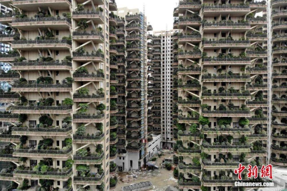 """成都建首个""""垂直森林""""住宅小区"""