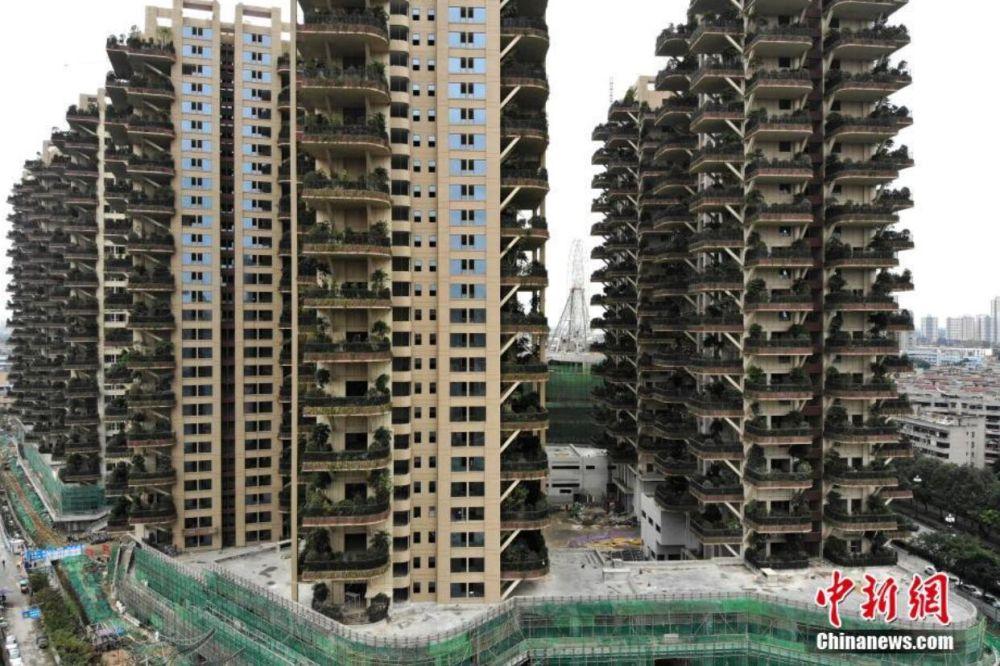 11月23日,成都市新都区某新建住宅小区施工现场如火如荼。该小区为中国国内首个第四代住房项目,家家户户的阳台成为私家花园,种上了绿植,从空中俯瞰,十分震撼,这也是当地首个垂直森林住宅小区。据了解,第四代住房重点在于增加可供绿化种植的平面面积,提高绿视率,为植物的生长寻找新空间,发展垂直绿化从而就成为了改善现代城市生态环境的有效手段。 张浪 摄