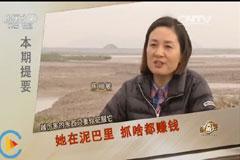 陈丽敏滩涂养殖致富经,她在泥巴里 抓啥都赚钱