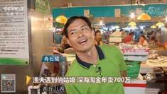 渔夫遇到俏姑娘 深海淘金年卖700万 20180822