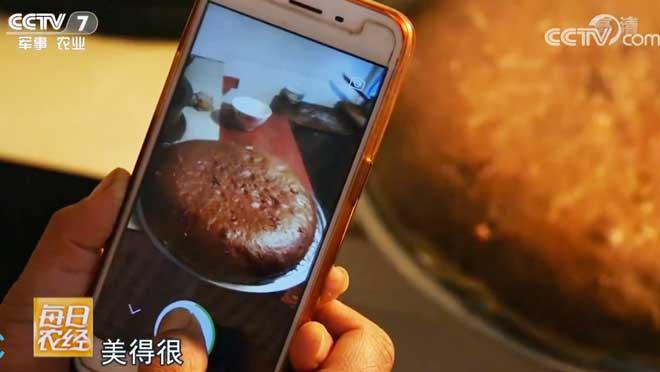 [每日农经]吃年猪 过大年——秦川渭水边的年味 20190125