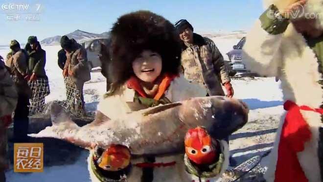 [每日农经]-30℃捕鱼怎一个冷字了得 20190201