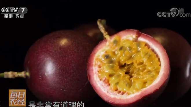 [每日农经]吃了还想再吃的水果 20190305