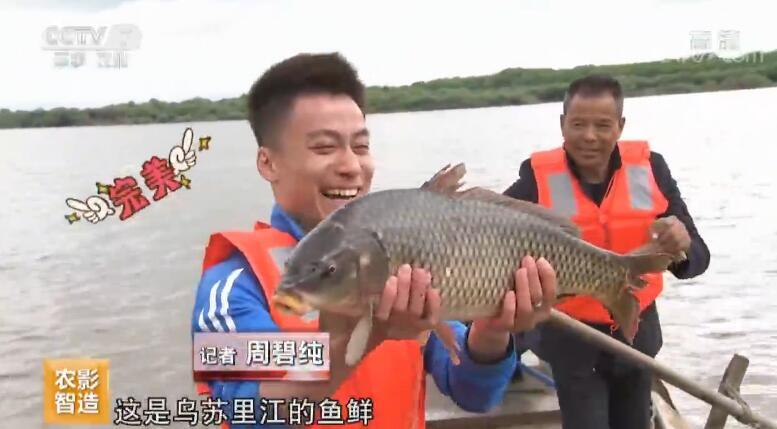 """[科技苑]濒危""""水中猛虎""""人工驯20190619"""