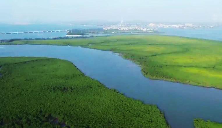 《远方的家》 20200213 大好河山 醉美湿地