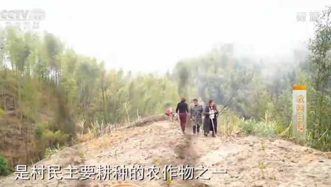 《攻坚日记》 20200513 浏阳河边的客家事(3)