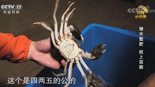 《田间示范秀》 20200603 塘水蟹肥 纸上菜嫰