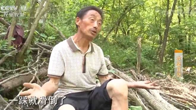 《攻坚日记》 20200717 徐生金筑梦记(5)