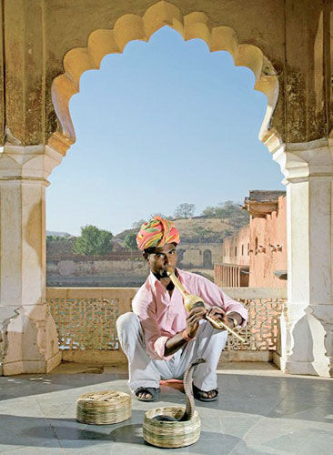 神秘奇妙的印度舞蛇文化
