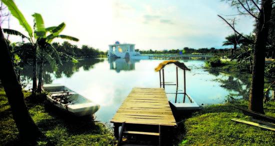 绿色稻田和美丽池塘所包围的宜兰民宿