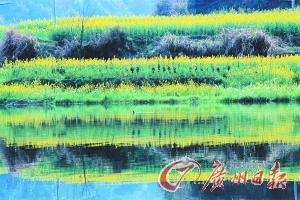 江岭梯田落差不大,但有花有水。