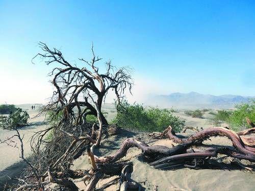 """死亡谷中处处表达着""""死亡""""的讯息"""