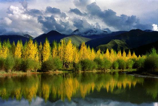 秀美的拉萨河畔-曹铁摄影