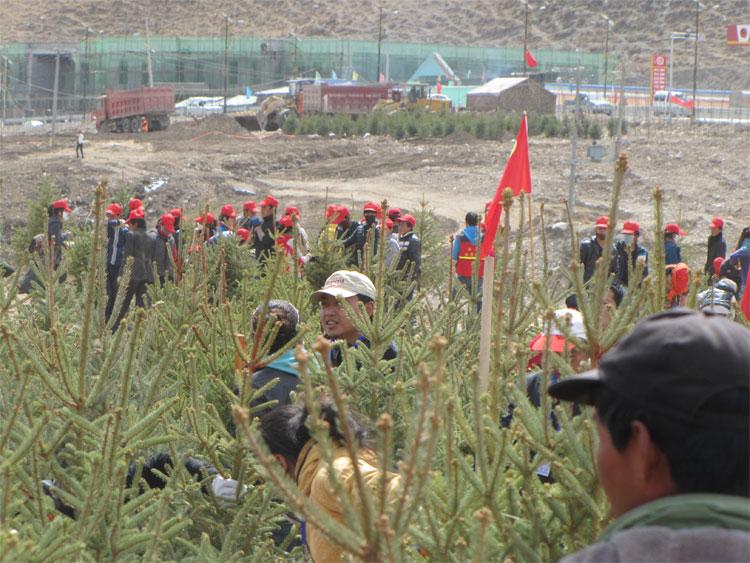 """4月14日,适逢玉树地震三周年,青海省委、省政府在玉树州结古镇举行了以""""绿色玉树""""为主题的万人植树造林活动。"""
