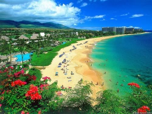 天堂夏威夷 旅游购物全攻略