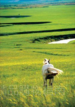 城市传说| 草原季绝美之地 岂能放过?