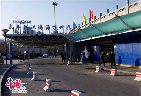 地理中国:中央电视塔 夜京城的浪漫胜地