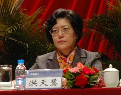 全国妇联副主席、书记处书记洪天慧